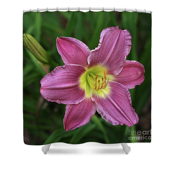 The Beckoning Shower Curtain