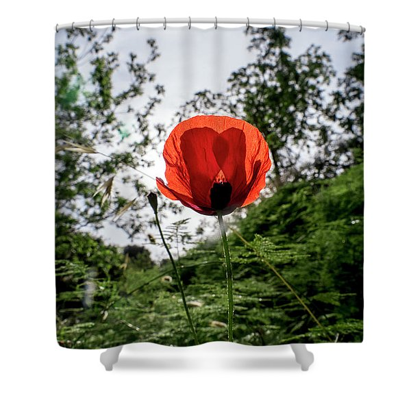 Shower Curtain featuring the photograph The Big Red 02 by Arik Baltinester