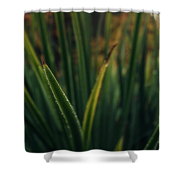 The Blade II Shower Curtain