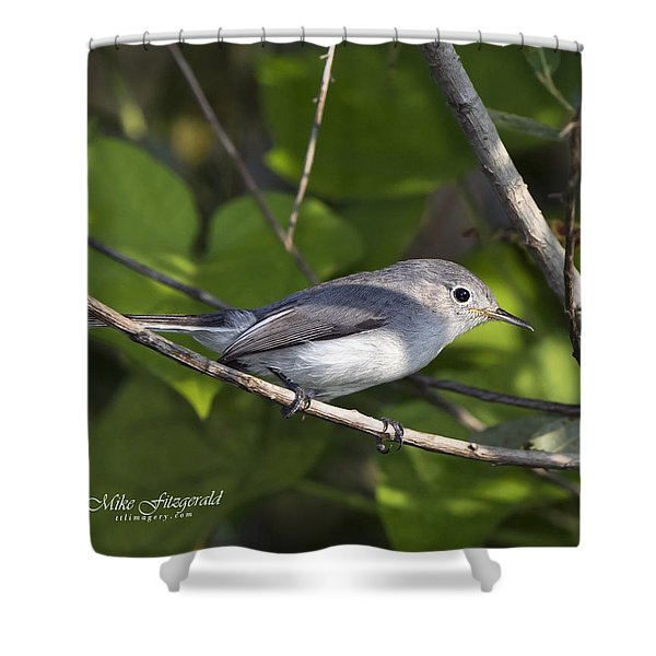 The Blue And The Grey Shower Curtain