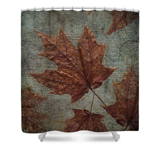 The Bronzing Shower Curtain