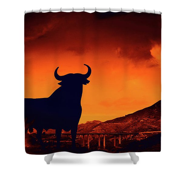 Spanish Shower Curtain