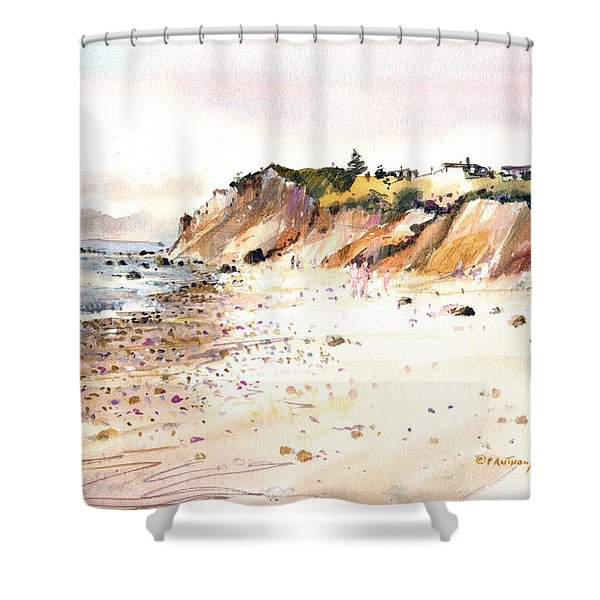 The Cliffs Of Aquinnah Shower Curtain