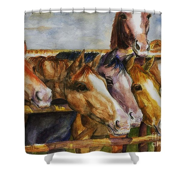 The Colorado Horse Rescue Shower Curtain