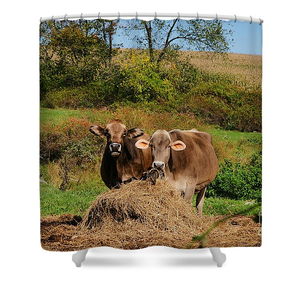 The Company Of 2 Shower Curtain