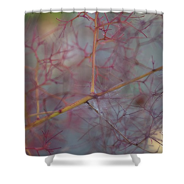 The Confusion Shower Curtain