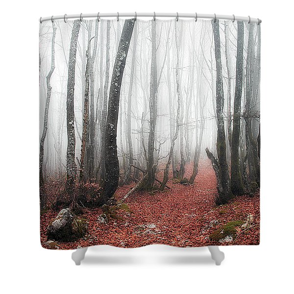 The Corridor Shower Curtain