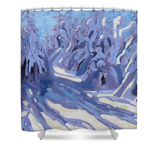 The Day After The Storm Shower Curtain