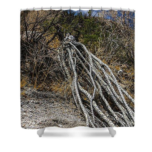 The Desert Sentinel Shower Curtain