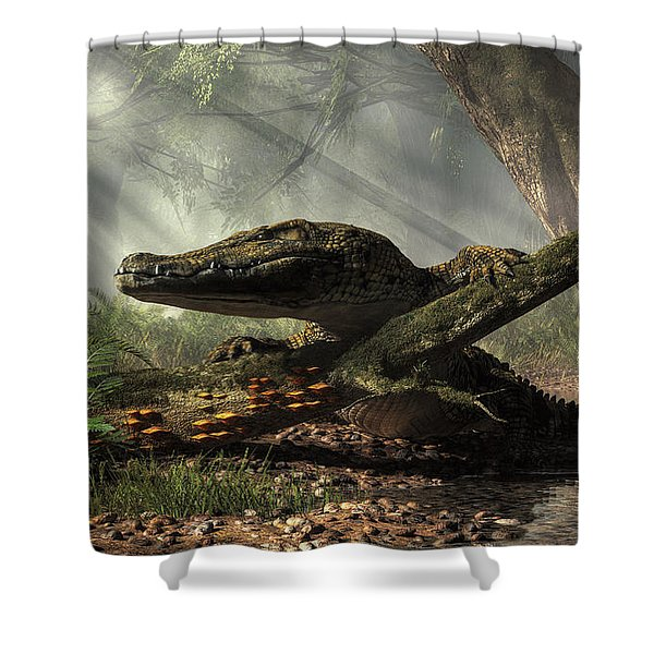 The Dragon Of Brno Shower Curtain