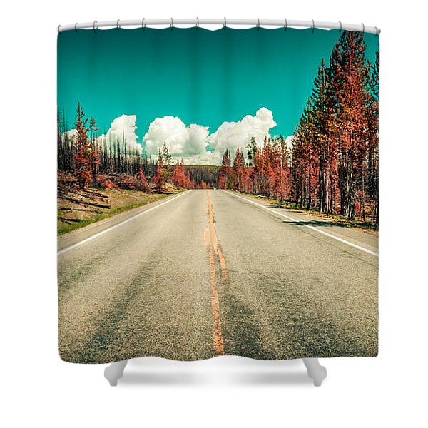 The Dried County Shower Curtain