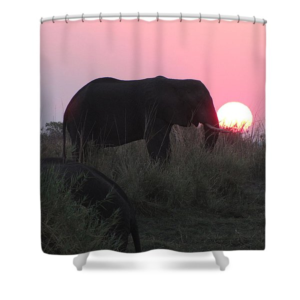 The Elephant And The Sun Shower Curtain