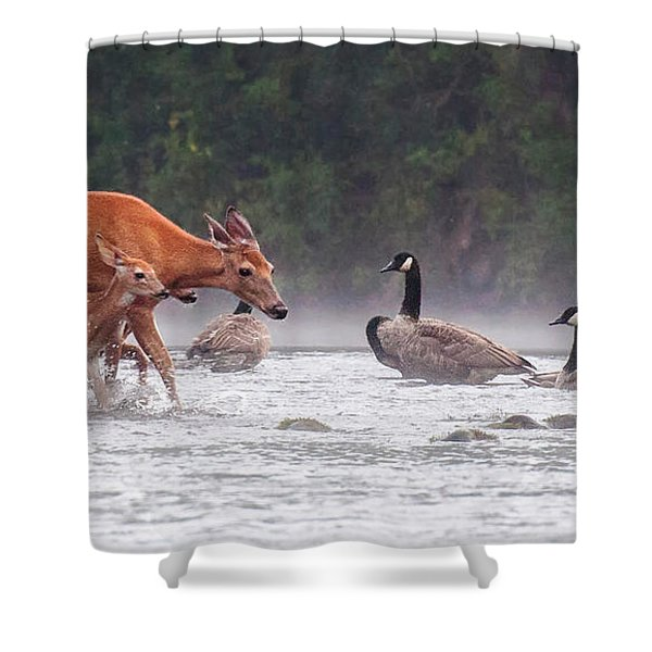 The Encounter Shower Curtain