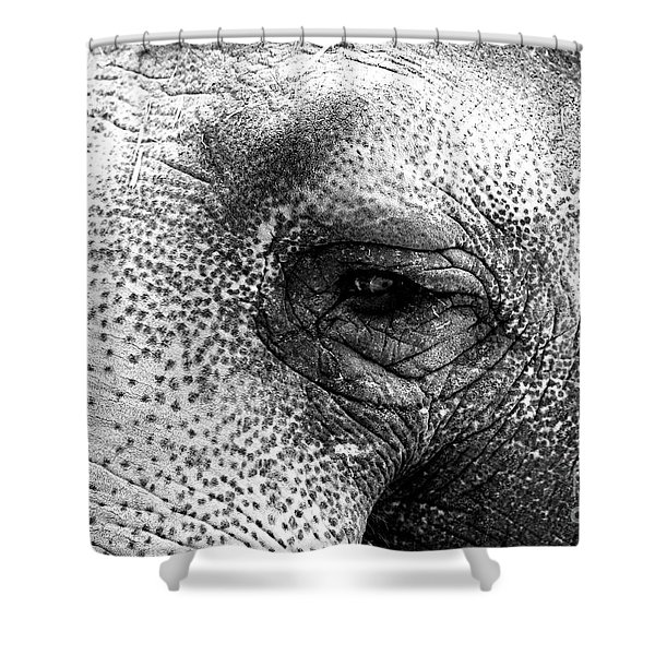 The Eye That Never Forgets Shower Curtain