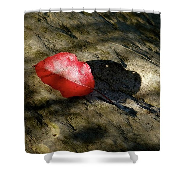 The Fallen Leaf Shower Curtain