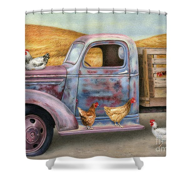 Where The Hens Gather  Shower Curtain