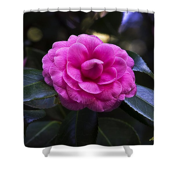 The Flower Signed Shower Curtain