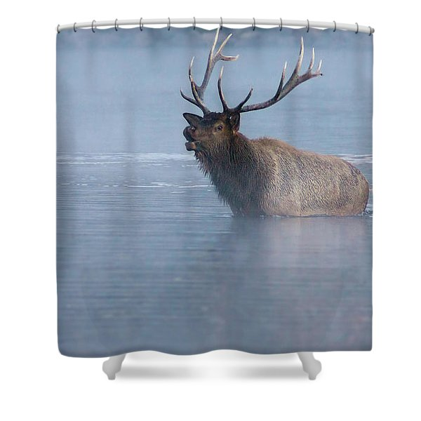 The Foggy Bugle Shower Curtain
