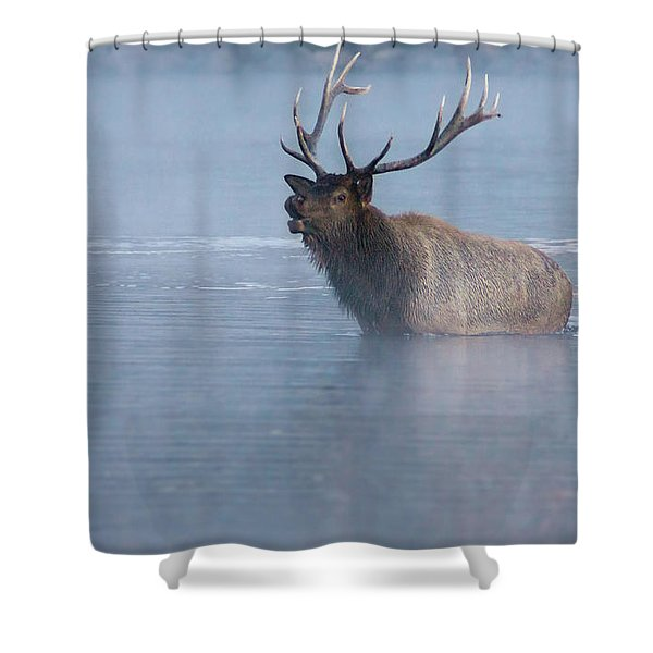 Shower Curtain featuring the photograph The Foggy Bugle by John De Bord