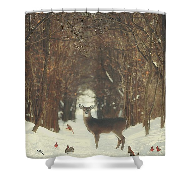 The Forest Of Snow White Shower Curtain