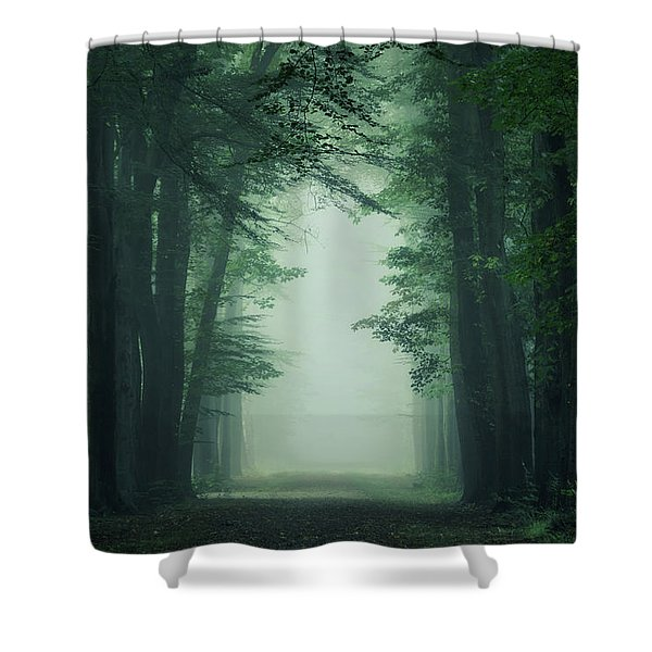 The Gate Shower Curtain