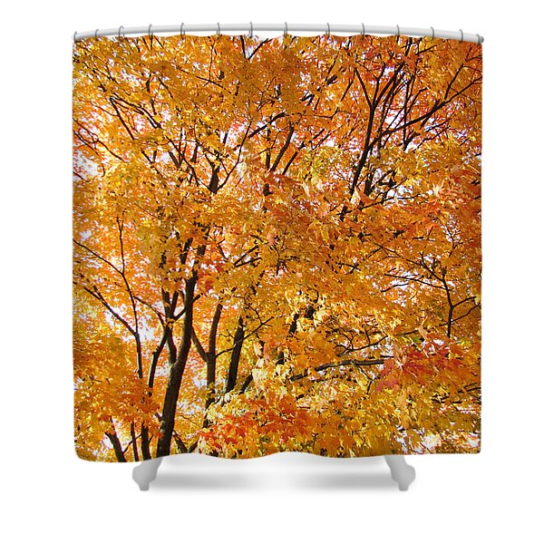 The Golden Takeover Shower Curtain