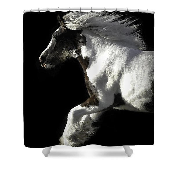 The Gorgeous Filly Shower Curtain