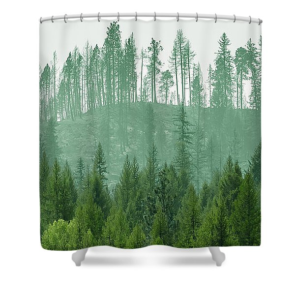 The Green And The Not So Green Shower Curtain