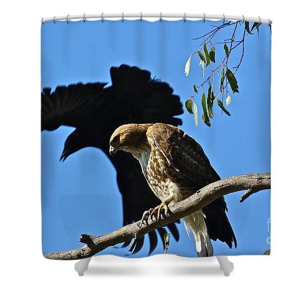 The Harasser Shower Curtain