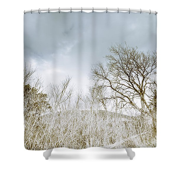 The Haunting Cold Shower Curtain
