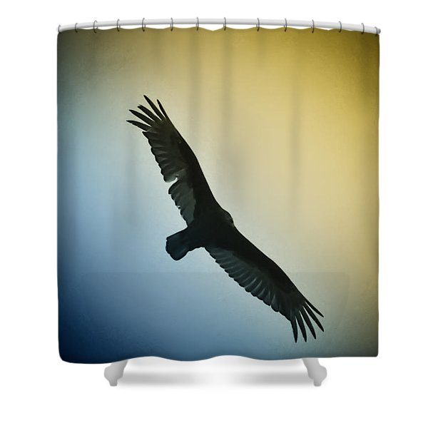 The Hawk Shower Curtain by Bill Cannon