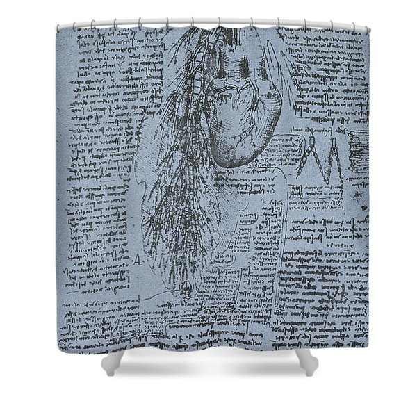 The Heart And The Bronchial Arteries Shower Curtain