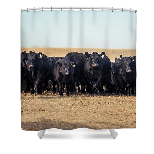 The Herd Rushes In Shower Curtain