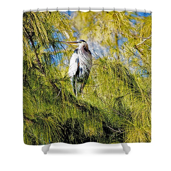 The Heron's Whiskers Shower Curtain
