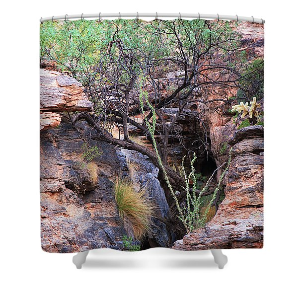 The Hole - Mount Lemmon Shower Curtain