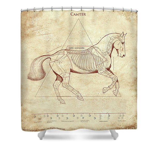The Horse's Canter Revealed Shower Curtain
