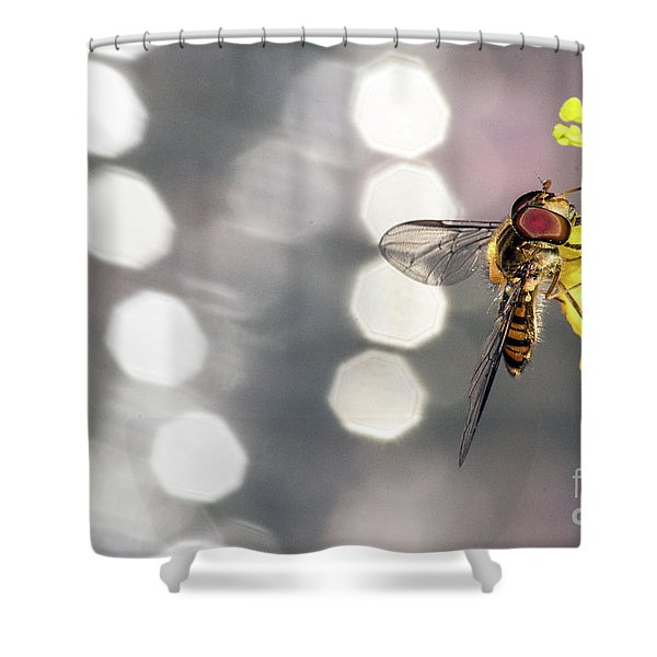 The Hoverfly Shower Curtain