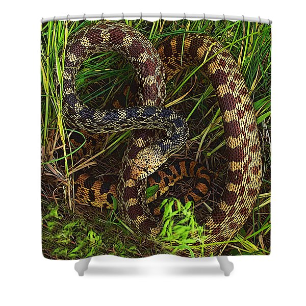 The Impersonator Shower Curtain