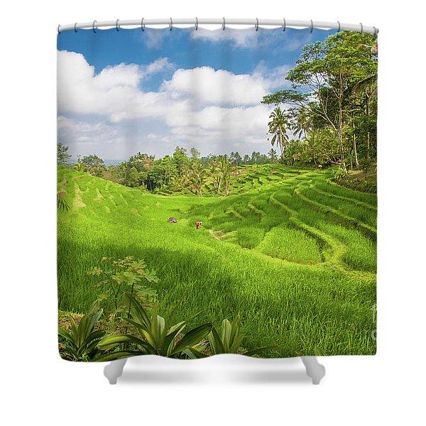 The Island Of God #14 Shower Curtain