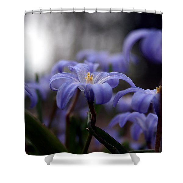 The Joy Of Springtime Shower Curtain