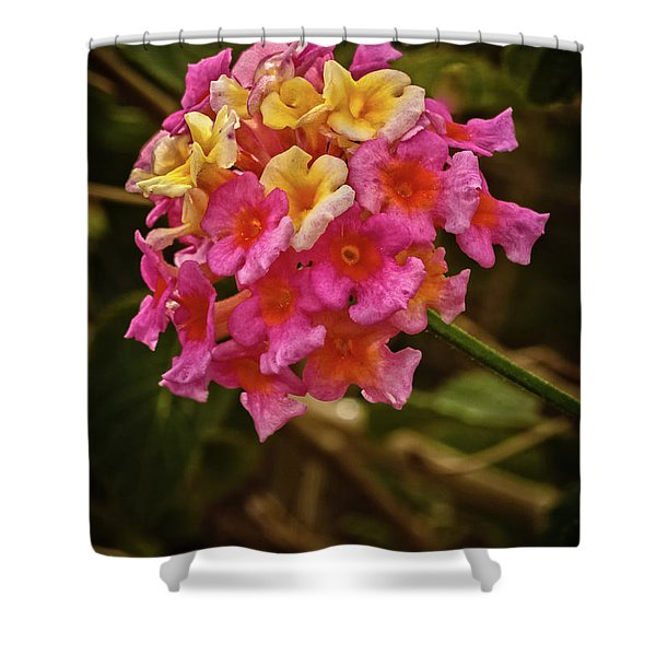 The Lantana Shower Curtain