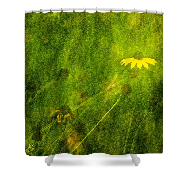The Last Black-eyed Susan Shower Curtain