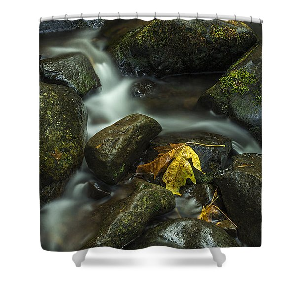 The Leaf Signed Shower Curtain