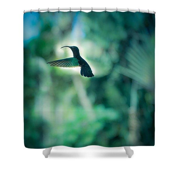 The Levitation Shower Curtain