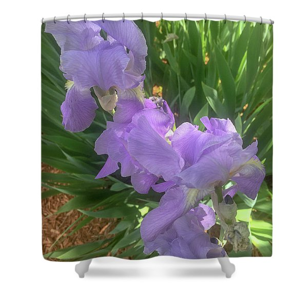 The Light Of Day Shower Curtain