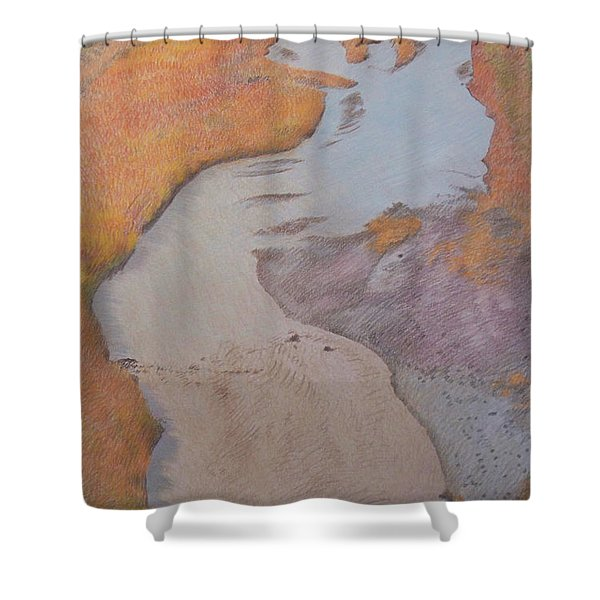Shower Curtain featuring the pastel The Little Mo by Cris Fulton