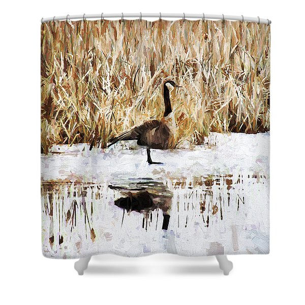 The Lone Traveler Shower Curtain