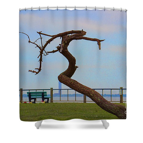 The Lone Tree Shower Curtain