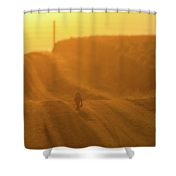 The Lost Puppy Shower Curtain