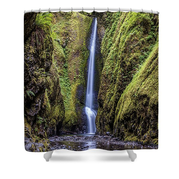 The Lush And Green Lower Oneonta Falls Shower Curtain
